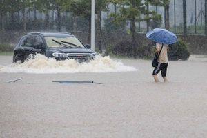 Toàn cảnh Trung-Nhật 'căng mình' đối phó mưa lũ kinh hoàng