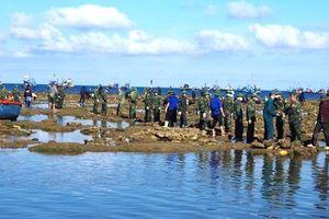 Gần 300 đoàn viên, thanh niên tham gia đắp đê chắn sóng tại Quảng Ngãi