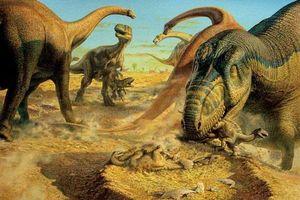 Nghiên cứu mới chỉ ra nguyên nhân khiến hầu hết các loài khủng bị tuyệt chủng: Không phải núi lửa phun trào