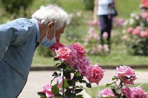 Cực hình đối với bệnh nhân mắc COVID-19: Mất khả năng cảm nhận mùi