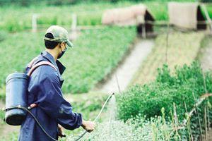 Khắc phục bất cập quản lý thuốc bảo vệ thực vật
