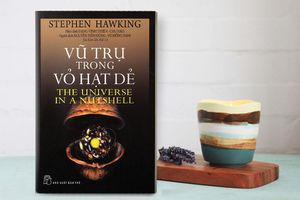 Những cuốn sách hay của Stephen Hawking ai cũng nên đọc