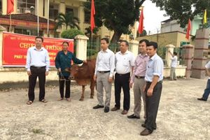 Chi hỗ trợ gần 6 tỷ đồng, huyện Mê Linh giảm 775 hộ nghèo trong 1 năm