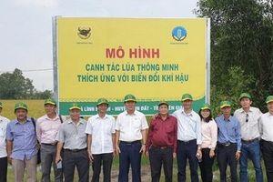 Phân bón Đầu Trâu 17 năm liên tiếp là 'Hàng Việt Nam chất lượng cao'.