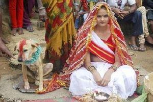 Lạ kỳ những vụ người kết hôn với… động vật