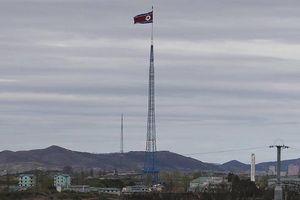 Triều Tiên không có kế hoạch tổ chức các cuộc đàm phán với Mỹ