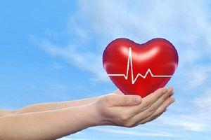 Những thực phẩm có chứa Mange cực tốt cho hệ tim mạch
