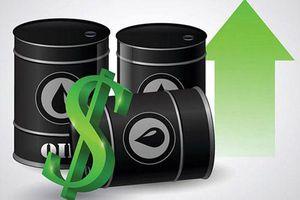 Giá xăng, dầu (7/7): Tiếp tục đi lên