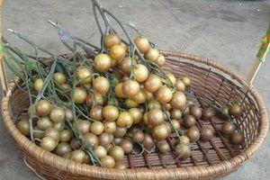 Loại quả nhỏ bé tưởng 'vô dụng' ai dè là 'vua trái cây mùa hè', giàu dinh dưỡng mà giảm cân cực tốt