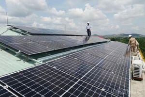 Điện lực Gia Lai: Thanh toán 648,5 triệu đồng tiền mua điện mặt trời