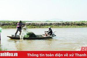 Huyện Triệu Sơn phát triển nuôi trồng thủy sản