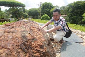 Nhà báo Vương Xuân Nguyên: 'Phát huy vai trò báo chí trong hệ sinh thái truyền thông hiện đại'