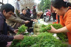 Những món ngon từ rau rừng ở Cao Bằng