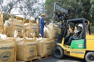 Phân bón Văn Điển: Nâng chất lượng hạt gạo vùng cao Định Hóa