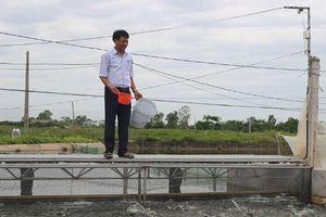 Huyện Ứng Hòa: Thay nguồn nước cho vùng chuyên canh thủy sản