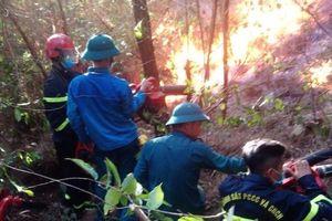 Dập tắt cháy rừng ở thị xã Nghi Sơn