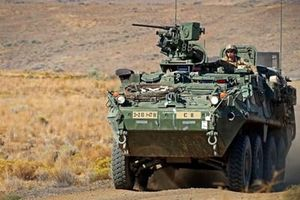 Argentina mua xe bọc thép chở quân Stryker của Mỹ