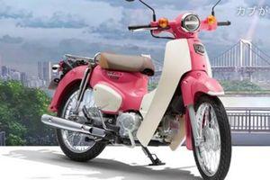 Honda Super Cub bước ra từ phim hoạt hình, từ 58 triệu đồng