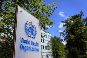 Đức: Mỹ rút khỏi WHO là 'bước thụt lùi trong hợp tác toàn cầu'