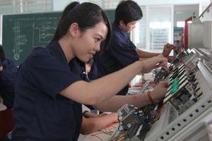 Trung tâm DVVL TP. Cần Thơ: Tập trung bồi dưỡng chất lượng nguồn lao động
