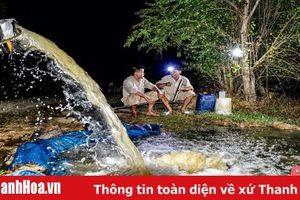 Công nhân thủy lợi thức trắng đêm dẫn nước vào ruộng cứu lúa