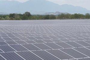Nhà máy Điện mặt trời Phước Thái 1 phát điện toàn bộ 9 vùng pin