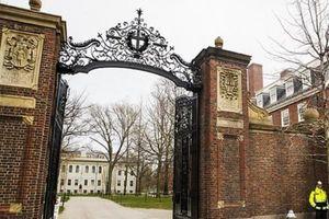 Đại học Harvard và MIT khởi kiện chính quyền Mỹ về chính sách mới đối với sinh viên quốc tế