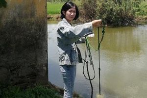 Cần giám sát nguồn nước xả thải trên hệ thống thủy lợi Tả Trạch
