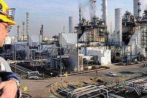 EIA: Sản lượng dầu thô của Mỹ giảm ít hơn so với dự báo