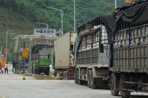 Chi phí logistics quá cao làm giảm sức cạnh tranh nông sản Việt