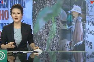 Ứng dụng cho vay nặng lãi của Trung Quốc đang âm thầm rút khỏi Việt Nam?