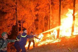 Nhiều bất cập trong phòng chống cháy rừng