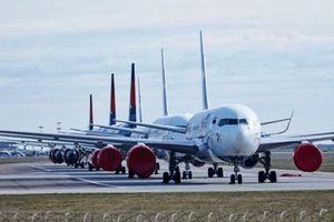 Nga xem xét nối lại các chuyến bay thương mại quốc tế