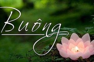 Phật dạy sống thanh thản: Đừng ôm quá khứ, đừng so kè tiểu nhân