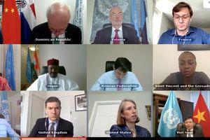 Hội đồng Bảo an Liên hợp quốc thảo luận trực tuyến về khu vực Tây Phi và Sahel