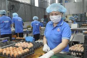 TS Trần Đình Thiên: Ngoài hỗ trợ doanh nghiệp cần thúc đẩy khởi nghiệp sáng tạo