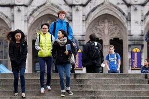 Du học sinh Việt có thể bị 'trục xuất' khỏi Mỹ: Bộ GD-ĐT nói gì?