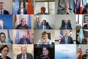 Hội đồng Bảo an LHQ thảo luận trực tuyến về khu vực Tây Phi và Sahel