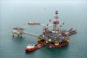 Làn sóng phá sản của các nhà khai thác dầu khí nước sâu
