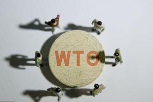 WTO cần cú huých mới
