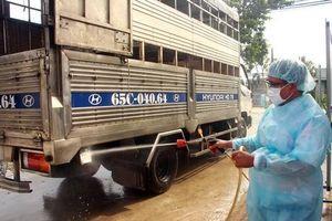 Phó Thủ tướng yêu cầu cảnh báo kịp thời Dịch tả lợn Châu Phi