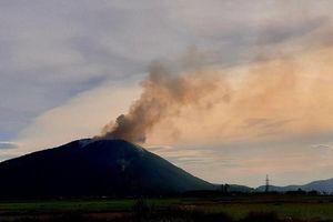 Nghệ An: Cháy rừng tại Diễn Châu