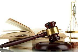 Tiêu điểm xử phạt tuần qua: Thêm nhiều cá nhân và doanh nghiệp bị UBCKNN phạt