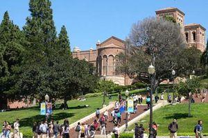 Mỹ buộc sinh viên nước ngoài hồi hương: Châm ngòi cuộc chiến pháp lý