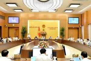 Ủy ban Thường vụ Quốc hội sẽ xem xét việc bổ sung sách giáo khoa vào danh mục Nhà nước định giá