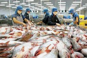 Từ 1-8, thủy sản Việt Nam xuất khẩu vào EU được hưởng thuế suất 0%