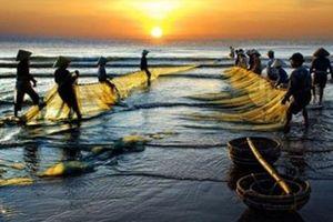 'Quê hương' của Tế Hanh: Ấn tượng thị giác qua thơ