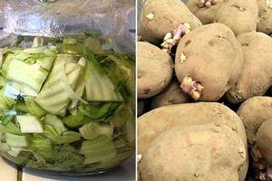 6 loại rau củ chứa đầy độc tố dễ gây ung thư gan, nhiều người vẫn vô tư ăn hàng ngày