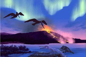 Hóa thạch 90 triệu năm tuổi của một loài chim giúp dự đoán biến đổi khí hậu