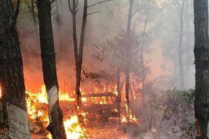 Triệu tập 1 phụ nữ liên quan đến vụ cháy rừng giữa nắng nóng đỉnh điểm